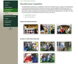 ATC Web Solutions worked with Foundation to create Beautification web page